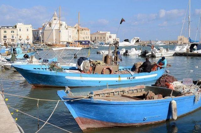 Consulente eCommerce Amazon Ebay Corato Bari Puglia Vendere online in Puglia 1